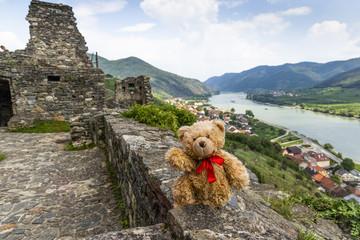 Teddy bear Dranik in Wachau valley.