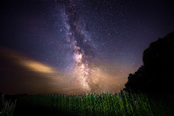 Milky way stacked with forrest an field, real colors, made in austrian upperaustria at night, stars and galaxies on the sky