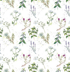 Seamless pattern with Collection herb. Watercolor hand drawn illustration. Botanical illustration