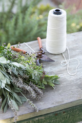 Supplies to dry fresh herbs