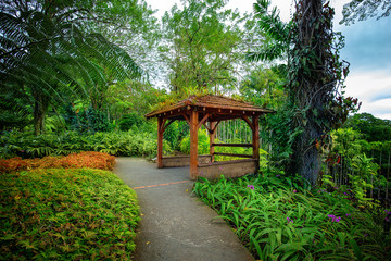 Tropical Balata garden in Martinique. The Balata is a botanical garden located on the Route de Balata about 10 km outside of Fort-de-France, Martinique