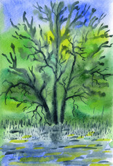 A dried old tree standing in the water. Bright colors. Sunny summer day. Light haze. Watercolor painting on paper.