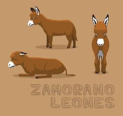 Donkey Zamorano-Leones Cartoon Vector Illustration