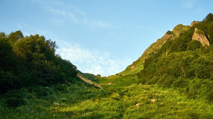 Beautiful green ravine in mountains of Sochi