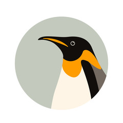 penguin  profile side vector illustration flat style
