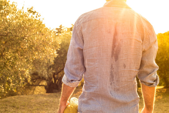 Sweaty farmer standing in front of a olive grove - agriculture