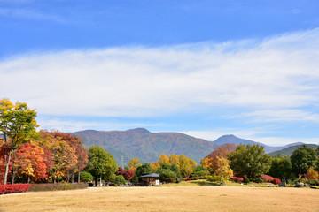 紅葉のあがたの森公園