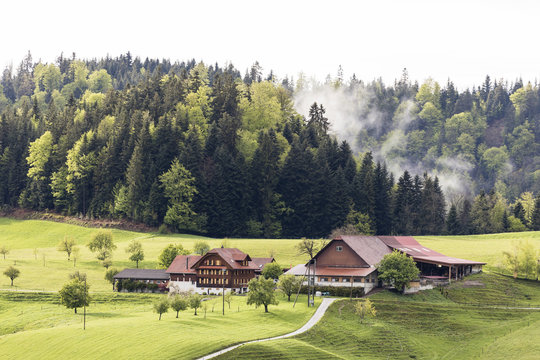 Foggy spring day with a farm in Entlebuch in the canton of Lucerne in central Switzerland