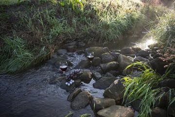 Rotweingläser und rote Weintrauben auf Steinen im fließenden Gewässer bei Sonnenaufgang.