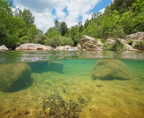 Printed kitchen splashbacks River Wild river with green vegetation and rocks over and underwater, split view above and below water surface, La Muga, Girona, Alt Emporda, Catalonia, Spain