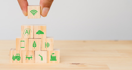Wall Mural - smart farm or agriculture futuristic technology concept, Hand man put the icon connect, icon including wireless wifi, ai or artificial intelligence, cloud, phone, sensor, truck, robot, drone, factory