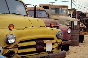 Three vintage trucks in junkyard