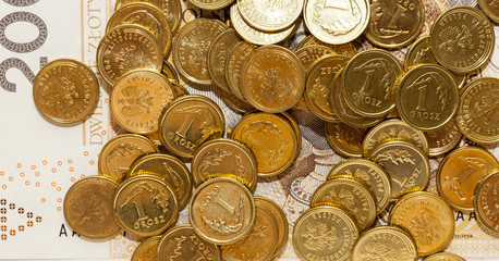 Polish coin money