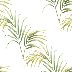 Watercolor illustration of coconut palm leaves, seamless pattern on white background
