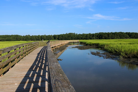 Huntington Beach State Park, South Carolina, USA.Scenic view from the wooden boardwalk on the expansive salt marsh during sunny morning. South Carolin nature background. Litchfield, Myrtle Beach area.
