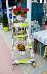 unusual wooden ladder with  flowerpots on street in front of restaurant in touristic place Sarti in Greece