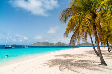 Idyllic beach at Caribbean