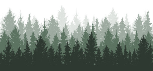 Poster Khaki Forest background, nature, landscape. Evergreen coniferous trees. Pine, spruce, christmas tree. Silhouette vector