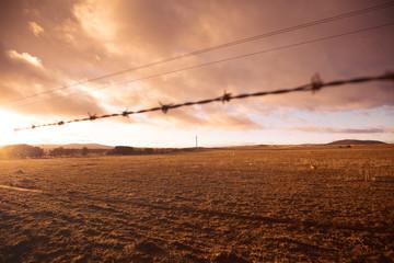 Australian farmland in drought