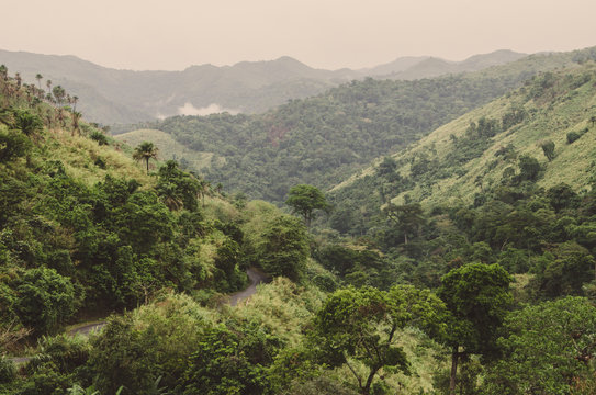 Winding mouintain road, mountains and lush green tropical vegetation on overcast day at Ring Road, Cameroon, Africa