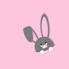 Easter Bunny on pink background