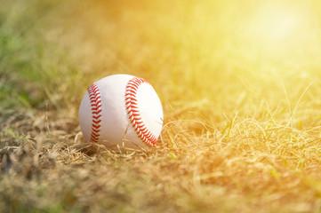 A white baseball on the  green grass