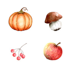 watercolor set of drawings of berries, vegetables and fruits