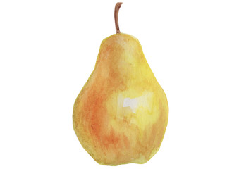 Watercolor drawing of tropical fruit on isolated white background. Detailed manual work with bright colors.