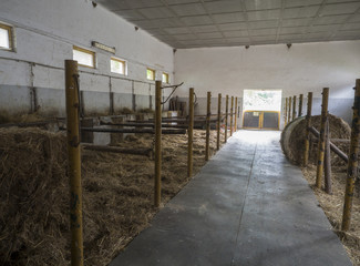 old empty horse stable stall block in historical farm Benice