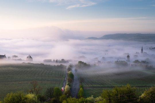 Foggy Morning at Nierstein - Rhineland Palatinate