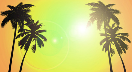 Tropical background, palm tree, sunset Wall mural