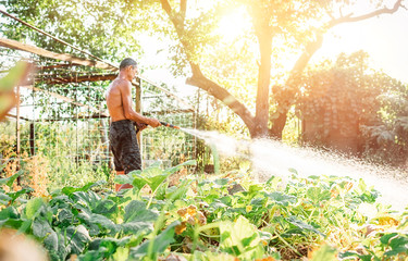 Farmer man watering his garden