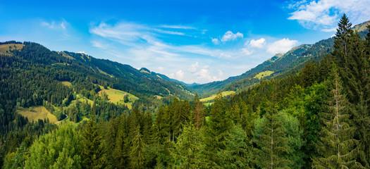 German Alps Allgäu during Summer
