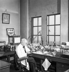 Portrait of scientist Alexander Fleming