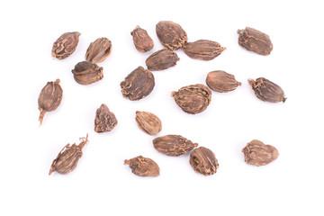 Black cardamom whole seeds isolated on white background. Indian spice