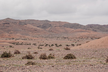 Fotobehang Droogte Alashan Plateau semi-desert. Southwest of the Eastern Gobi desert steppe
