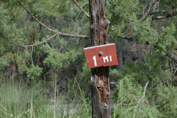 1-mile marker in a forest