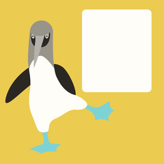 blue footed booby  vector illustration flat style   front