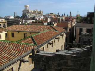 Panorama of Barcelona, beautiful view of the roofs of historic buildings
