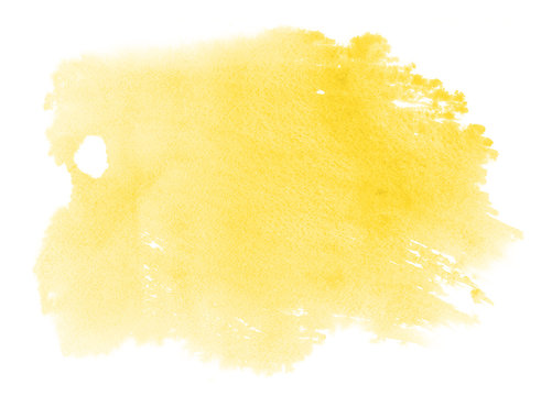 Abstract vibrant yellow watercolor on white background.The color splashing on the paper.