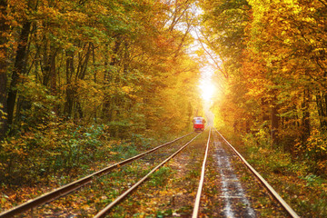 Abandoned railway under autumn colored trees tunnel