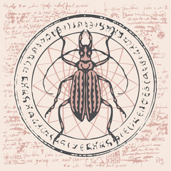 Illustration of a beetle on an abstract background of old papyrus or a manuscript with spots, circle, star, magical inscriptions and symbols. Vector banner in retro style