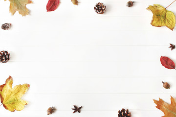 Autumn styled composition. Creative fall arrangement made of colorful maple, oak leaves, pine cones and acorns. Isolated natural objects on the white background. Space for text, flat lay, top view