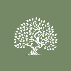 Organic natural and healthy olive tree silhouette logo isolated on green background.