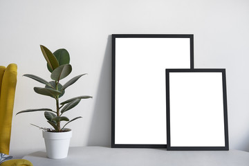 Two Posters in different sizes in black frame in nordic stylish modern interior, ficus, living room. Empty space for design layout.