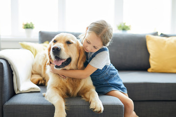 Little child embracing her labrador pet while both relaxing on sofa at home
