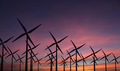 Windmolens tegen een avond lucht - park met veel wind molens