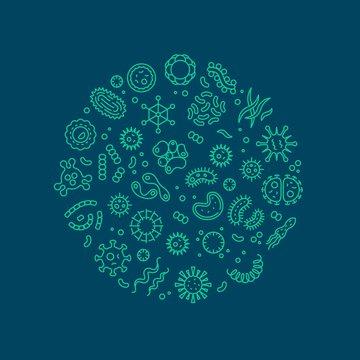 Microbes, viruses, bacteria, microorganism cells and primitive organism line vector concept. Virus cell and microbe, bacteria organism, medical microscopic illustration