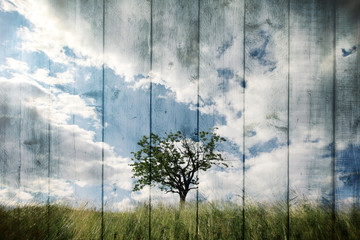 Single tree on imaginative meadow landscape with wooden boards texture background. Retro color tone effect used. Wall mural