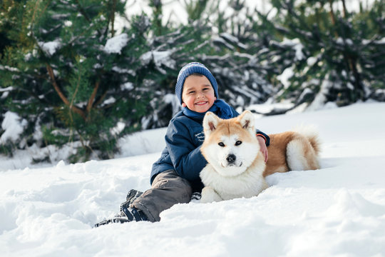 Little child and mom plays with funny Akita-inu dog in a winter park. Christmas happy family,mother and son walking with dog lying on snow in winter day. Drinking hot coffee or tea on snowy winter